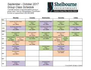 Shelbourne Physiotherapy Kinesiology exercise classes
